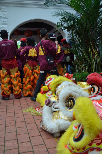 The lion heads keeping guard as the lion dancers watch the dragon dance in neighbouring Kota Kinabalu.